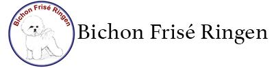 Bichon Frisé Ringen