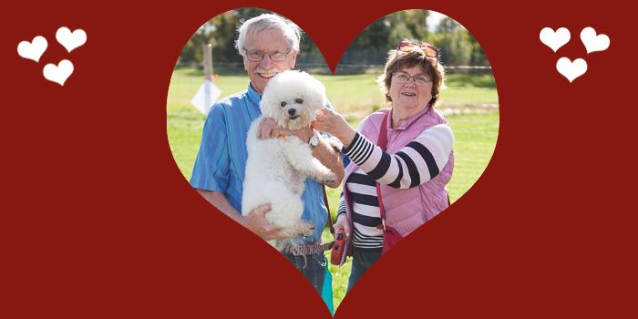 Kärlek på årets hundmässa