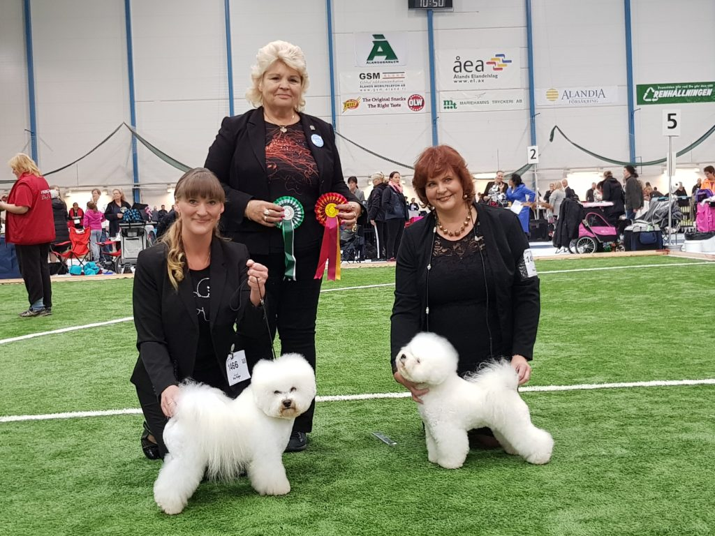 Åland_dog_show