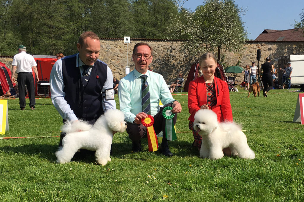 170520-hassleholm-teddy-bob-diamella-bos